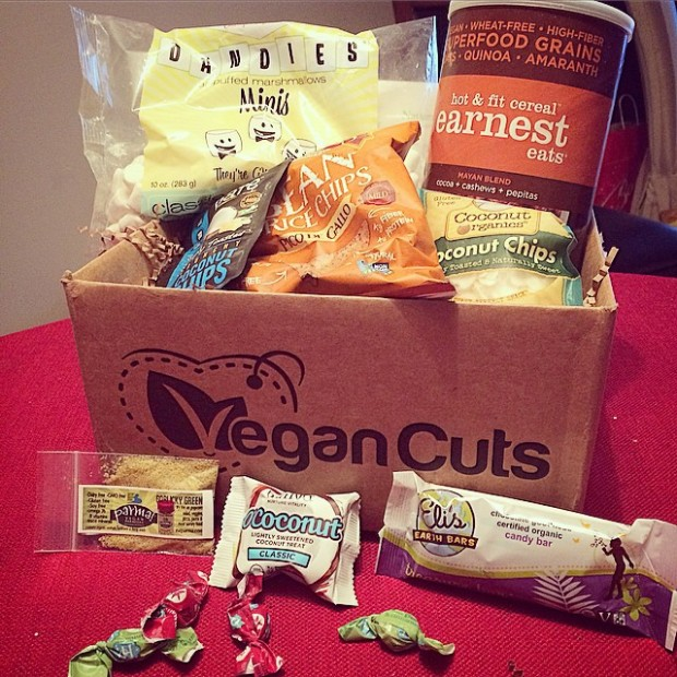 Review – Vegan Cuts Snack Box Subscription (Great for New Vegans!) – Lazy Girl Vegan