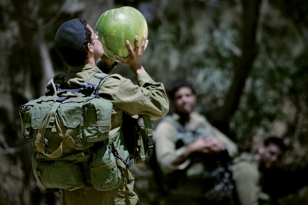 Israeli Solders Demand More Vegan Food on the Job – Weekly News Roundup